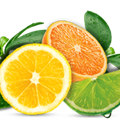Citrusduft